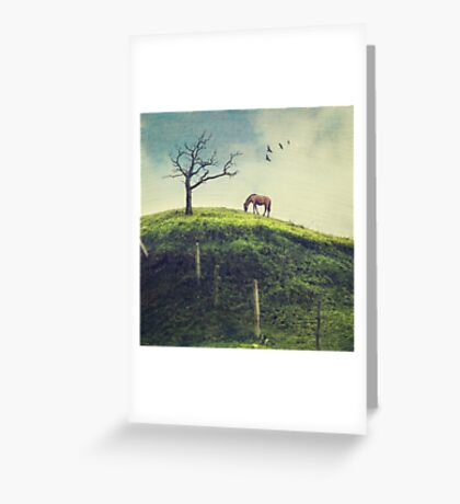 Horse on a Colombian Hillside Greeting Card