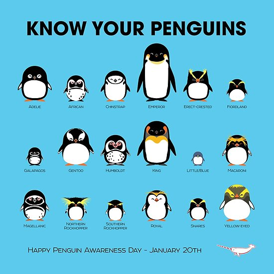 Quot Know Your Penguins Quot Posters By Pepomintnarwhal Redbubble