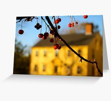 Red on Yellow House Greeting Card