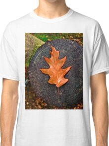 Autumn leaves Classic T-Shirt