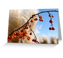 Red on White Fluffy Greeting Card