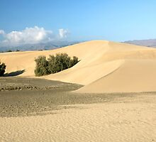 the desert on Gran Canaria by HalinaJ