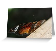 Orange is the New Black (Butterfly) Greeting Card
