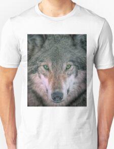 Gray Wolf head shot portrait T-Shirt