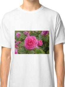 Rose - pink Classic T-Shirt
