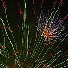 Firework...or Artwork??! by lotusblossom