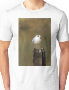 Black-Headed Gull on a Fence Post Unisex T-Shirt