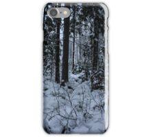 Swedish Winter II iPhone Case/Skin