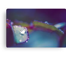 Perfect Droplet Canvas Print