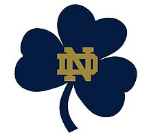 University of Notre Dame by collegegal13