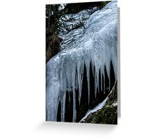Swedish Winter IV Greeting Card