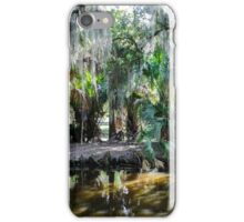New Orleans City Park iPhone Case/Skin