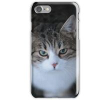 From the Cat's Point of View . Andrzej Goszcz. iPhone Case/Skin