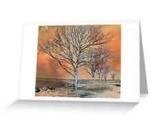 Winter's Dawn Greeting Card