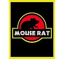 Mouse Rat JP Photographic Print