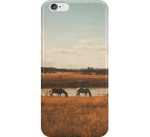 Vintage Horses iPhone Case/Skin
