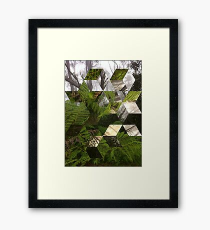 In This World Framed Print