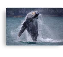 Whales can fly! Canvas Print