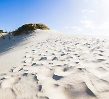 West Coast Tasmania desert panorama by Ryan Jorgensen