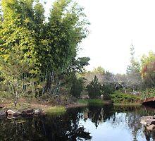 Bamboo Island by Bob Hardy