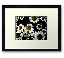 Rise & Shine Framed Print