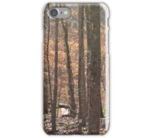 northern winds brewing iPhone Case/Skin
