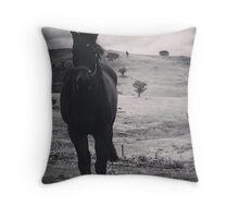 Horse gaze Throw Pillow