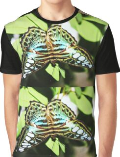 Turquoise blue, white & black butterfly Graphic T-Shirt