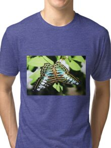 Turquoise blue, white & black butterfly Tri-blend T-Shirt