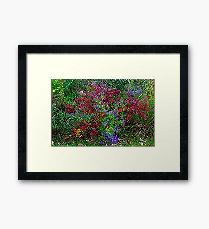 Multi-colored Framed Print