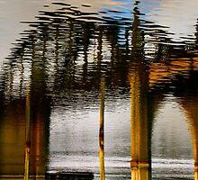 Reflecting the Bridge by Barbara  Brown