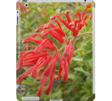 Red Grevillea iPad Case/Skin