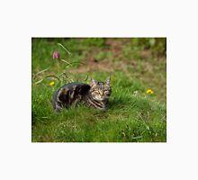 Tabby Cat in Grass Unisex T-Shirt