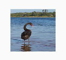 Black Swan (Cygnus atratus)  Unisex T-Shirt