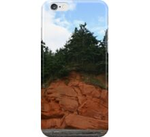 Cape Chignecto Nova Scotia iPhone Case/Skin