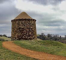 Beacon Tower at Burton Dassett by Avril Harris
