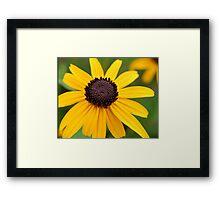 Happy Yellow Flower Framed Print
