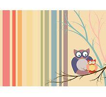Retro vintage owls Photographic Print