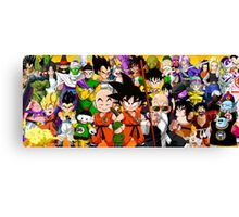 DB characters Canvas Print