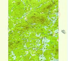 New York NY Saint Regis 129313 1955 62500 by wetdryvac