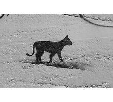 Black Cat Graffiti Street Art in Portugal Photographic Print