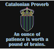 An Ounce Of Patience - Catalonian Proverb Photographic Print