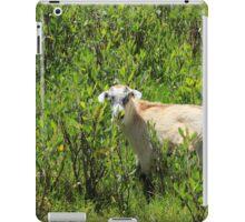 Kid Goat in Brush iPad Case/Skin