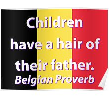 Children Have A Hair - Belgian Proverb Poster