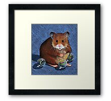 Hamster Playing with Marbles, Colour Pencil Art Framed Print
