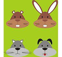 Animal Heads Photographic Print