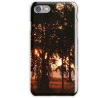 colors of a sunset with trees - colores de una puesta del sol con arboles iPhone Case/Skin