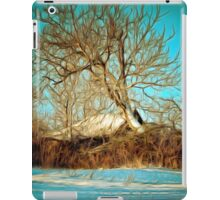 A digital painting of a Romanian Winter scene iPad Case/Skin