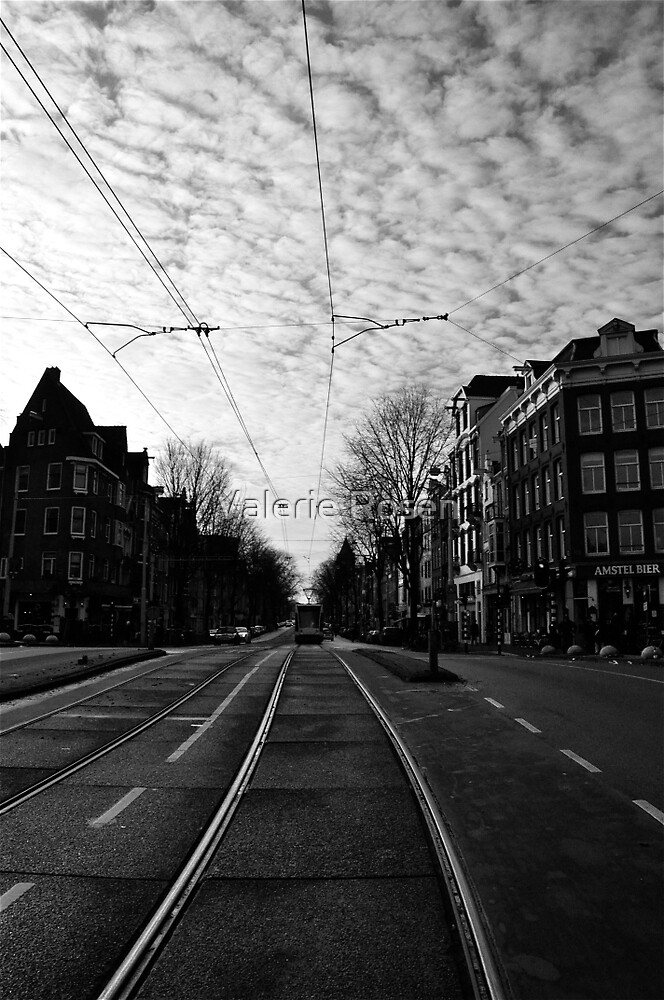 New Year's Day in Amsterdam by Valerie Rosen