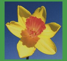Yellow and Orange Colored Daffodil Close Up Baby Tee